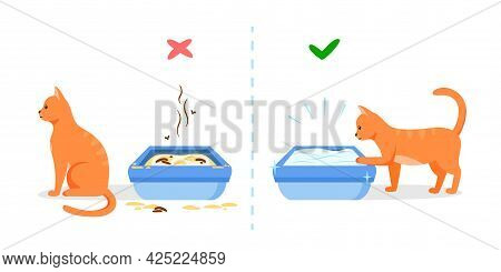 Dirty And Clean Cat Litter Box. Wrong And Right Way To Maintain Pet Toilet. Pet Toilet Hygiene Conce