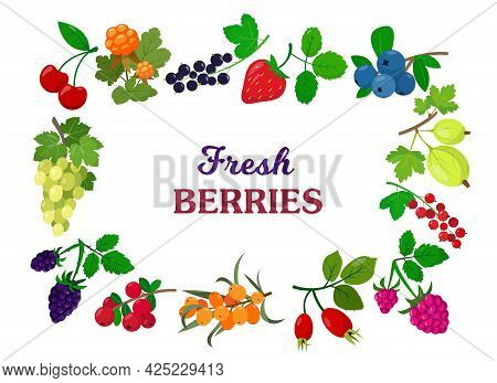 Delicious Fresh Wild And Garden Berry Mix For Daily Vitamins Menu. Organic Summer Berries And Fruits