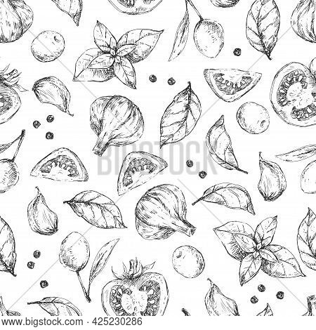 Spices And Herbs Seamless Pattern Vector Design. Tomato, Basil, Garlic. Olives Hand-drawn Illustrati