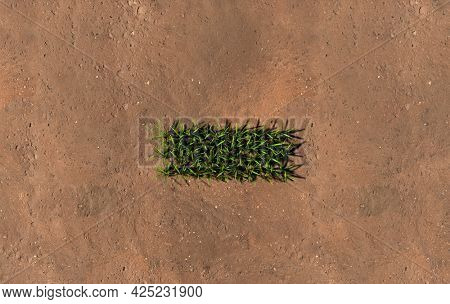 Concept conceptual green summer lawn grass symbol shape on brown soil or earth background, minus sign. 3d illustration metaphor for nature, conservation, organic, growth, environment, ecology, spring