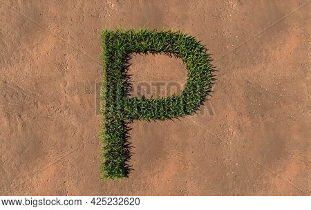 Concept conceptual green summer lawn grass symbol shape on brown soil or earth background, font of P. 3d illustration metaphor for nature, conservation, organic, growth, environment, ecology, spring