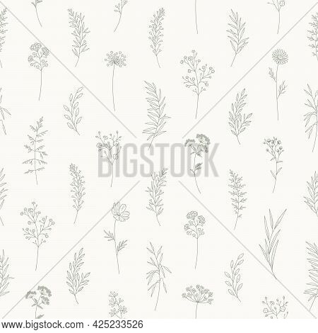 Seamless Pattern With Wildflowers. Floral Vector Illustration. Meadow Herbs And Flowers. Elegant Bot