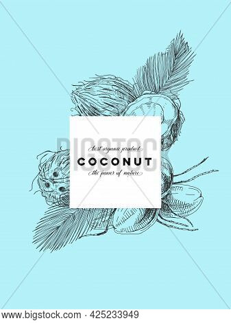 Coconut Frame Poster, Retro Hand Drawn Vector Illustration. Template Element For Coco Product Packag