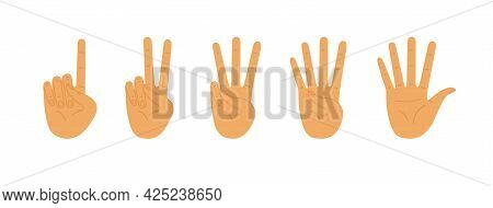 Palms Count From One To Five. Counting Hands, Hand Gestures. Vector Flat Illustration Isolated On Wh