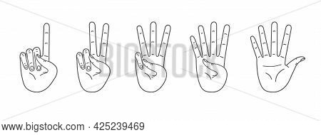 Palms Count From One To Five. Counting Hands, Hand Gestures. Vector Line Illustration Isolated On Wh