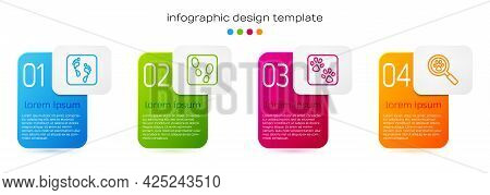 Set Line Human Footprint, Footprints Shoes, Paw And Search. Business Infographic Template. Vector