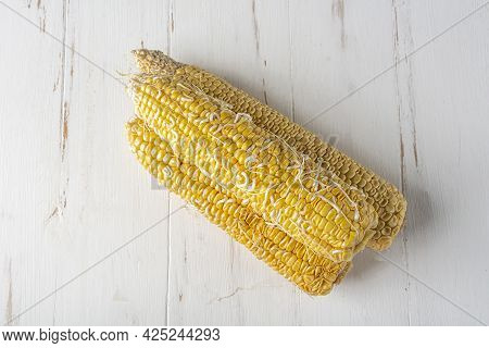 Open, Raw Cobs Of Corn Sprouted With White Sprouts. Spoiled Food.