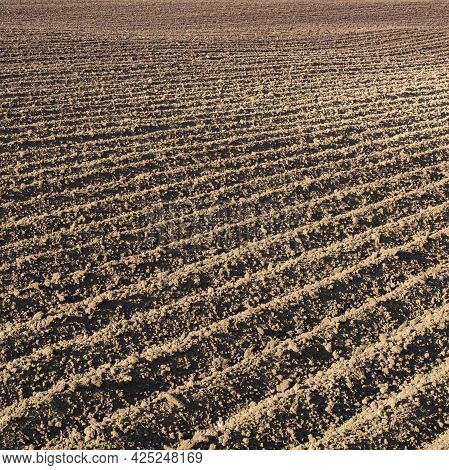 Deep Furrows In A Plowed Field Close-up