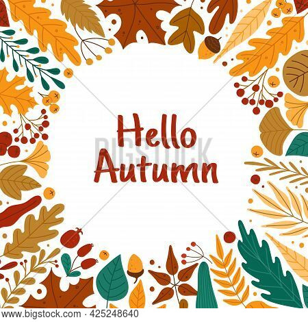Autumn Leaves Frame. Hello Autumn Banner With Red Or Yellow Leaves, Berries, Acorns. Oak, Maple Fall
