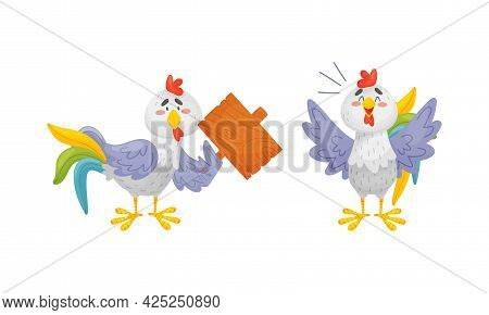 Rooster Funny Character With Bright Feathers Crowing And Holding Wooden Board Vector Set