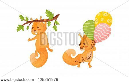 Fluffy Squirrel Character Holding Bunch Of Balloons And Hanging On Tree Branch Vector Set