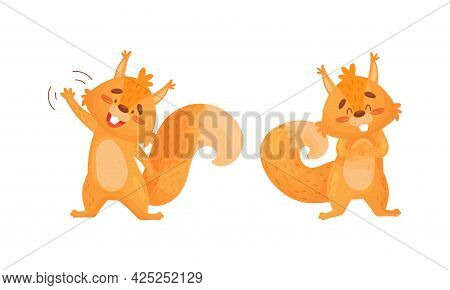 Fluffy Squirrel Character Waving Paw And Smiling Vector Set