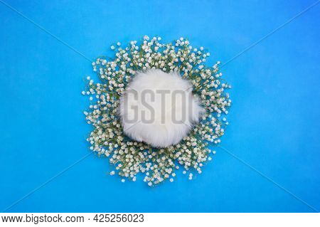 Digital Backgrounds For Newborns. Nest On A Blue Background With Fur Inside, Surrounded By Lily Of T