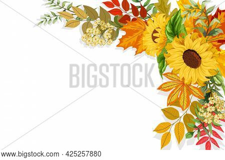 Illustration With Autumn Leaves.sunflowers And Autumn Leaves On A White Background In Vector Illustr