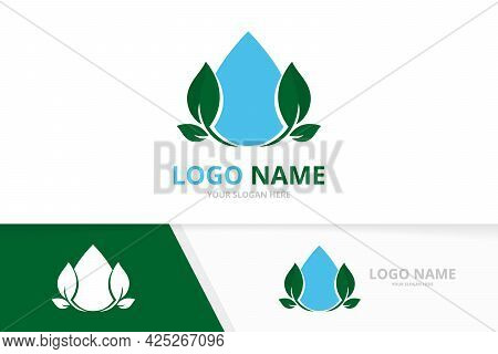 Eco Water Logo Combination. Clean Droplet And Leaves Logotype Design Template.