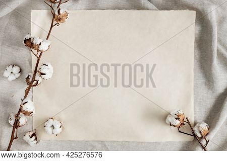 Cotton flower branch on a blank paper over a creased gray fabric background