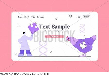 Scientist Working With Dna Of Chicken Researcher Making Experiment In Lab Genetically Modified Anima