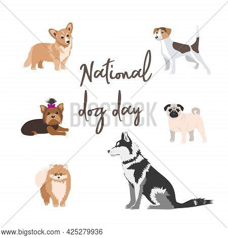 A Banner For The Celebration Of The National Dog Day On August 26. Vector Flat Illustration. Purebre