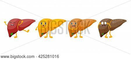 Stages Of Human Liver Damage. Liver Cartoon Character. Healthy, Fatty, Fibrosis And Cirrhosis. Vecto