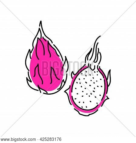 Dragon Fruit Is Whole And Half. Summer Tropical Fruits, Flat Icon . Sketch Of A Vector Illustration