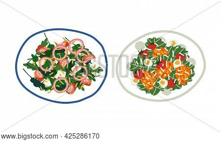 Salad With Mixed Greenery, Sliced Onion And Tomato Served On Plate Above View Vector Set