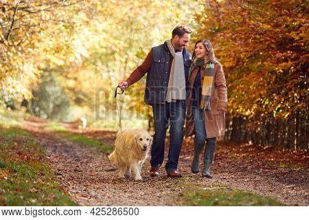 Couple Take Pet Golden Retriever Dog For Walk On Track In Autumn Countryside Holding Hands