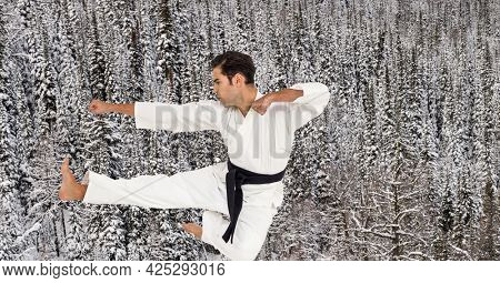 Digital composite image of caucasian male marital artist with black belt against winter landscape. sports competition and tournament concept