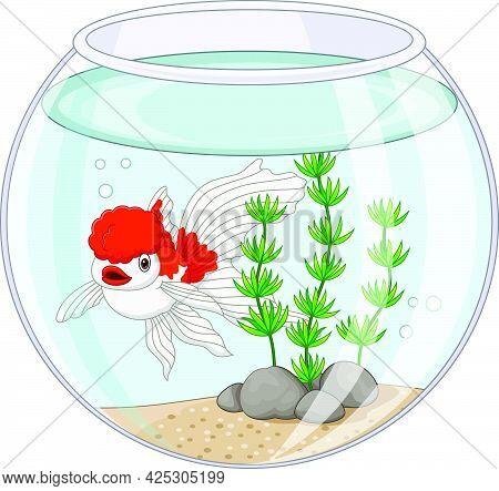 Vector Illustration Of Cartoon Oranda Goldfish Swimming In Fishbowl