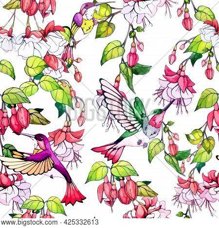 Hummingbird Birds And Fuchsia Flowers Seamless Pattern. Repeat Ornament Of Tropical Flora. Print Blo
