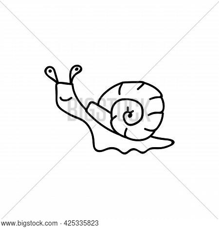 Single Hand Drawn Snail. Doodle Vector Illustration. Isolated On A White Background. Goblincore Styl