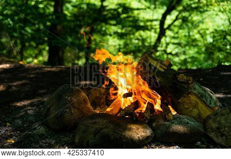 Campfire From Logs In Nature.campfire From Logs In Nature