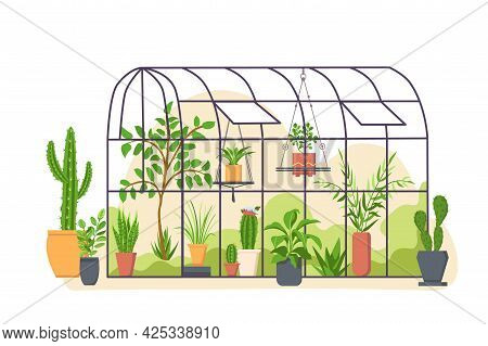Garden Greenhouse. Glass Botanical Orangery House With Cactus And Tropical Cultivated Plants In Pots