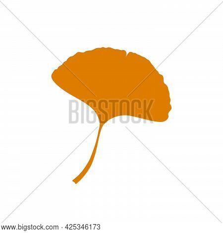 Autumn Ginkgo Or Gingko Biloba Leaf. Nature Botanical Vector Illustration, Herbal Medicine Graphic I