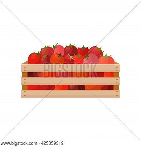 A Bright Autumn Illustration Depicting A Wooden Box With Red Ripe Tomatoes. The Harvested Crop Of Fr