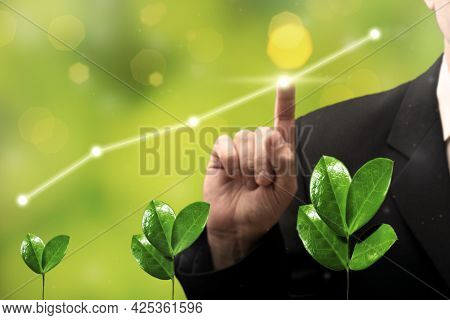 Businessman Hand Touching Growing Graph Of Agriculture Plant Seeding Growing Business Graph. Busines