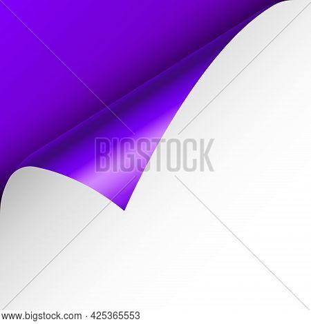 Violet Paper Curl. Curled Page Corner With Shadow. Blank Sheet Of Paper. Colorful Shiny Foil. Design