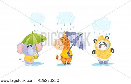 Smiling Animals Wearing Coat Walking On Puddles In Rainy Day With Umbrella Vector Set