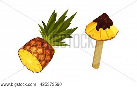Pineapple Exotic Dessert With Slab On Stick In Chocolate Glaze Vector Set