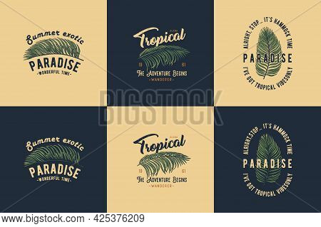 Exotic Paradise. Tropical Plant For T-shirt Print. Hawaii Summer Surfing. Palm For Tropic Surf Desig