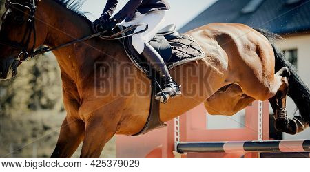 The Red Horse Overcomes An Obstacle. Equestrian Sport, Jumping. Overcome Obstacles. Dressage Of Hors
