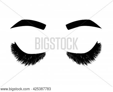 Illustration With Eyelashes And Eyebrows. Beautiful Eyes Makeup Look. Design For Brow And Lash Salon