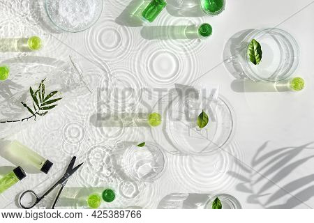 Cosmetic Skincare Background. Herbal Medicine With Green Leaves. Natural Sunlight, Long Shadows. Rip