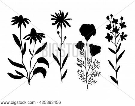 Vintage Floral Set Of Leaves And Branches. Vector Illustration