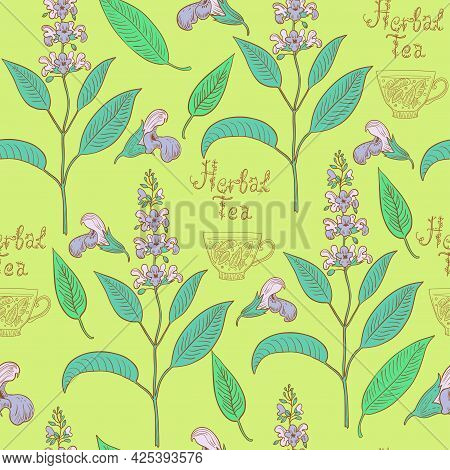 Seamless Pattern With Sage Plants And Flowers.