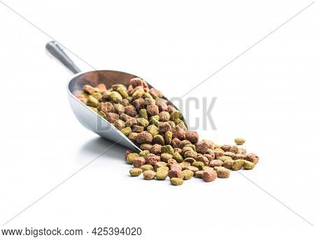 Dry kibble animal food. Dried food for cats or dogs in scoop isolated on white background.