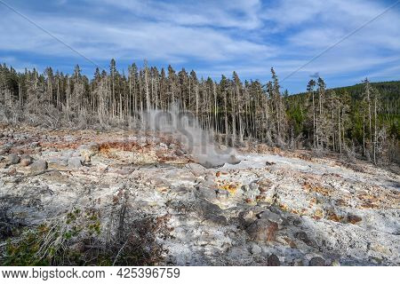 The Steamboat Geyser In Yellowstone National Park, Wyoming