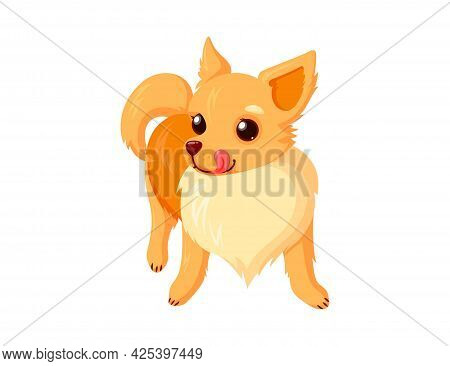 Chihuahua Pet With Tongue. Playful Dog Companion Isolated In White Background. Vector Illustration I