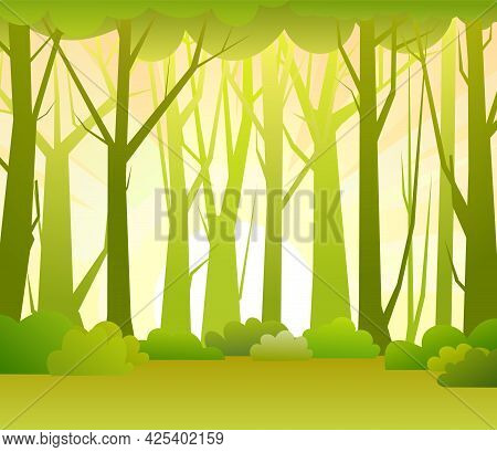 Forest Trees Vector. Dense Wild Plants With Tall, Branched Trunks. Summer Green Landscape. Flat Desi