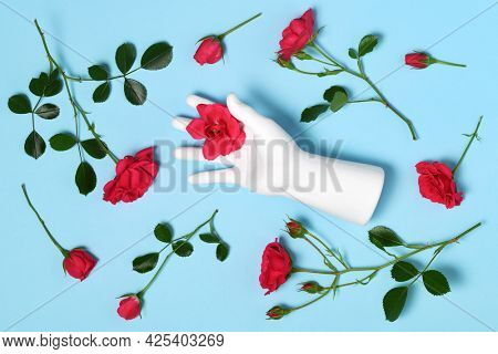 Gypsum hand with roses on blue background