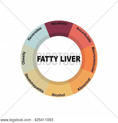 Diagram Concept With Fatty Liver Text And Keywords. Eps 10 Isolated On White Background